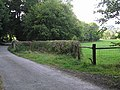 Trace of a level crossing - geograph.org.uk - 559460.jpg