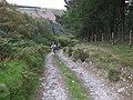 Track South of Llandrillo - geograph.org.uk - 973509.jpg