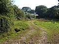 Track near Rookery Farm - geograph.org.uk - 245442.jpg