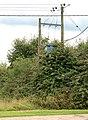 Transformer supplying Middle farm, Newbold Grounds - geograph.org.uk - 1416201.jpg