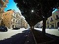 Trapani - Via Giovanni Battista Fardella - panoramio.jpg