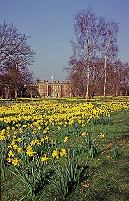 Trent Park House with daffodils - geograph.org.uk - 665658