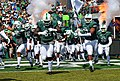 Tulane Green Wave football takes the field (2014).jpg