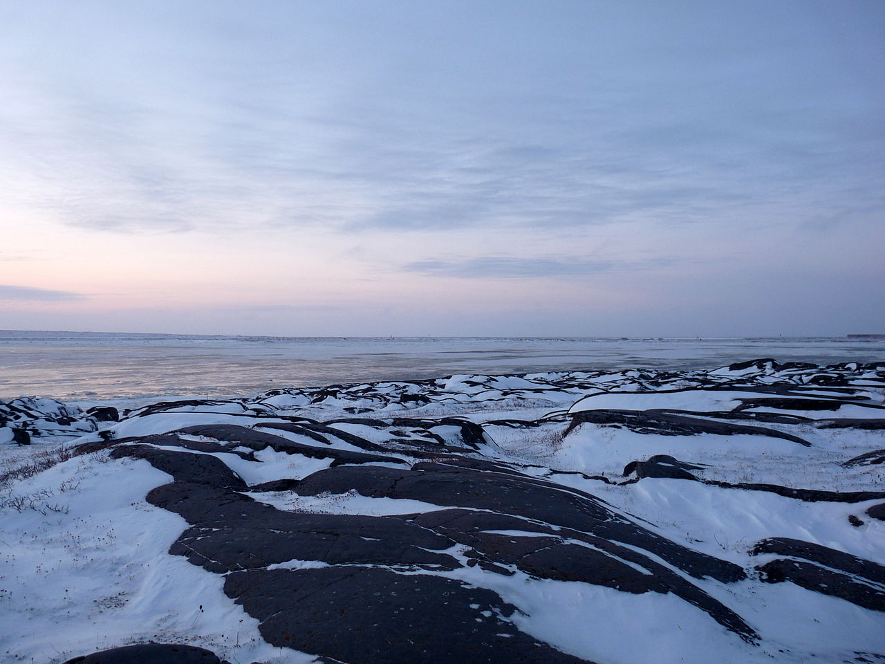 Tundra landscape on Cape Merry.JPG