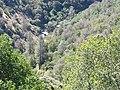 Tuolumne County, CA, USA - panoramio (29).jpg