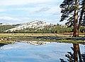 Tuolumne Meadows, Yosemite NP 5-20-15 (18275325313).jpg