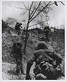 U.S. Marines Move Up Rugged Slope, July 1966 (31397016170).jpg