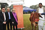 USAID and Punjab Livestock and Dairy Department Launch the First Ever Livestock Herd Book in Punjab (38426839932).jpg