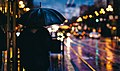 Umbrella California St rain (Unsplash).jpg
