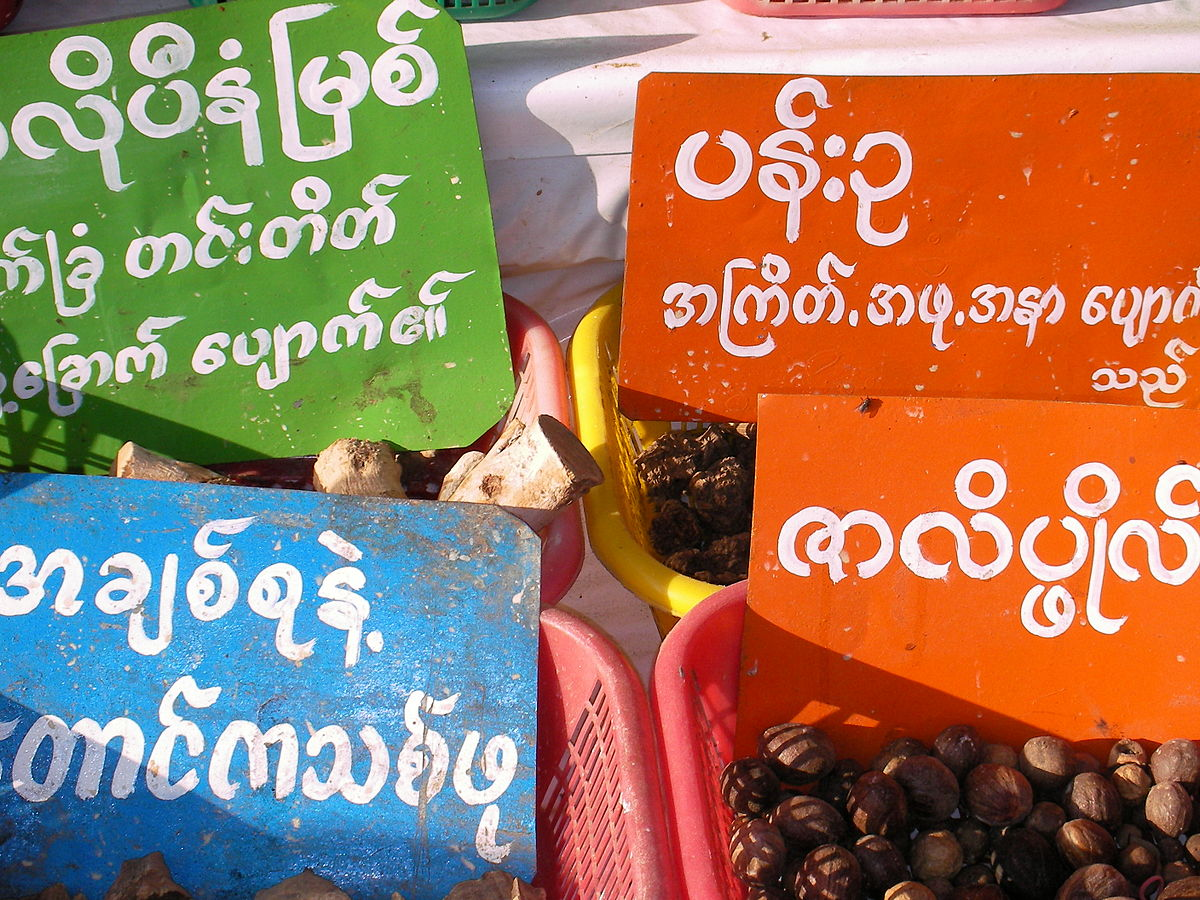 M Birman Cia S.a.i.c Birman (langue)...