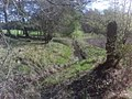 Verden- Bachlauf der Halse - geo.hlipp.de - 9066.jpg