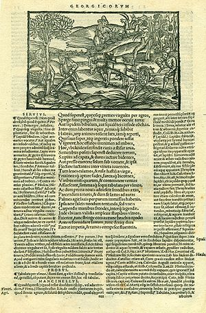 Maurus Servius Honoratus - 16th century edition of Virgil with Servius' commentary printed to the left of the text.