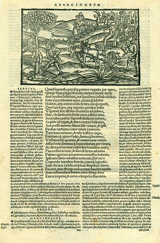 Antonio Mancinelli - Image: Vergilius, Basel 1544
