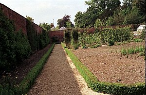 The Victorian Kitchen Garden - The south wall