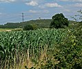 View towards Breedon Hill - geograph.org.uk - 915672.jpg
