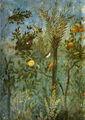 Villa di livia, affreschi di giardino, parete corta meridionale, dettagllio 01.jpg