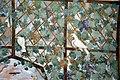 Villa giulia, portici con affreschi di pietro venale e altri, pergolato 60.jpg