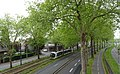Villeneuve d'Ascq Mongy Breda VLC sur la Ligne R.jpg
