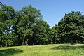 Vinnytsia Piatnychansky park SAM 0431.JPG