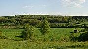 Viroinval (landscape).jpg