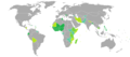 Visa requirements for Guinea-Bissauan citizens.png