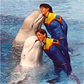 WIKI SEA WORLD FL 2.jpg