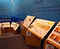 WT-TGN-14-Exposició WikiArs Biblioteca.jpg