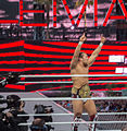 WWE Wrestlemania 28 - Sheamus vs Daniel Bryan.jpg