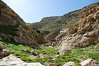 Wadi-Makukh-587.jpg