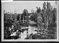 Waikato River at Cambridge, 1917 - Photograph taken by Edward John Wilkinson (21255662096).jpg
