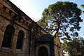 Waldheim Church and Tree.jpg