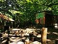 Waldkindergarten Kinderwald Tauberbischofsheim 3.jpg