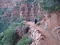Walking in the Supai Formation (9050589587).jpg