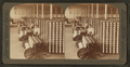 Warping room in the great Olympian Cotton Mills, Columbia, South Carolina, from Robert N. Dennis collection of stereoscopic views.png