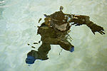 Water Survival Training Exercise 141208-M-OB177-053.jpg