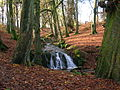 Waterfall in Eaglesham Glen or Green.JPG
