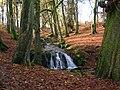 Waterfall in Eaglesham Glen or Green.JPG