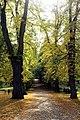 Weimar, historischer Friedhof, der Hauptweg.jpg