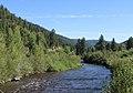 West Dolores River.JPG