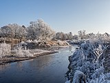 Winter-Regnitz-PC310031.jpg