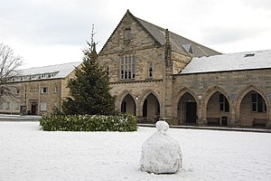 Elphinstone Hall - Christmas tree outside Elphinstone Hall