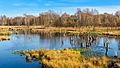 Wittmoor See, Herbst 2014.jpg