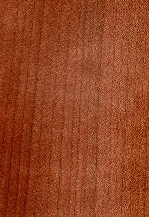 Bogenbau Holz Liste Von Hölzern Kirsche Wikibooks Sammlung