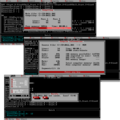 WorkingWithPowerBasic.png