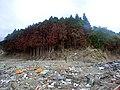 Wrecks and ruins after the 2011 Tōhoku earthquake 20110617 29.jpg