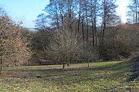 Wuppertal Metzmachersrath 2015 041.jpg