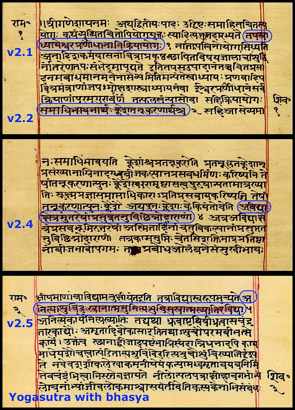 Yogasutra with Patanjali's bhasya, Sanskrit, Devanagari script, random sample pages f1v f2r f3v