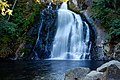Youngs River Falls (Clatsop County, Oregon scenic images) (clatDA0002d).jpg