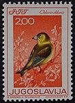 Yugoslavian stamp with Carduelis chloris 1968.jpg