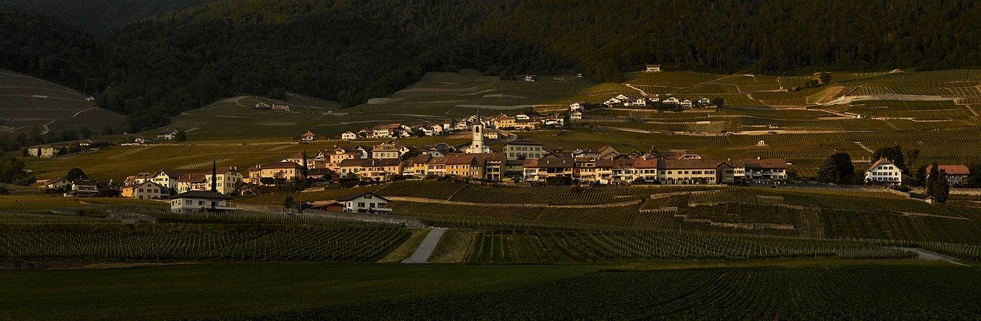 Yvorne Village.jpg